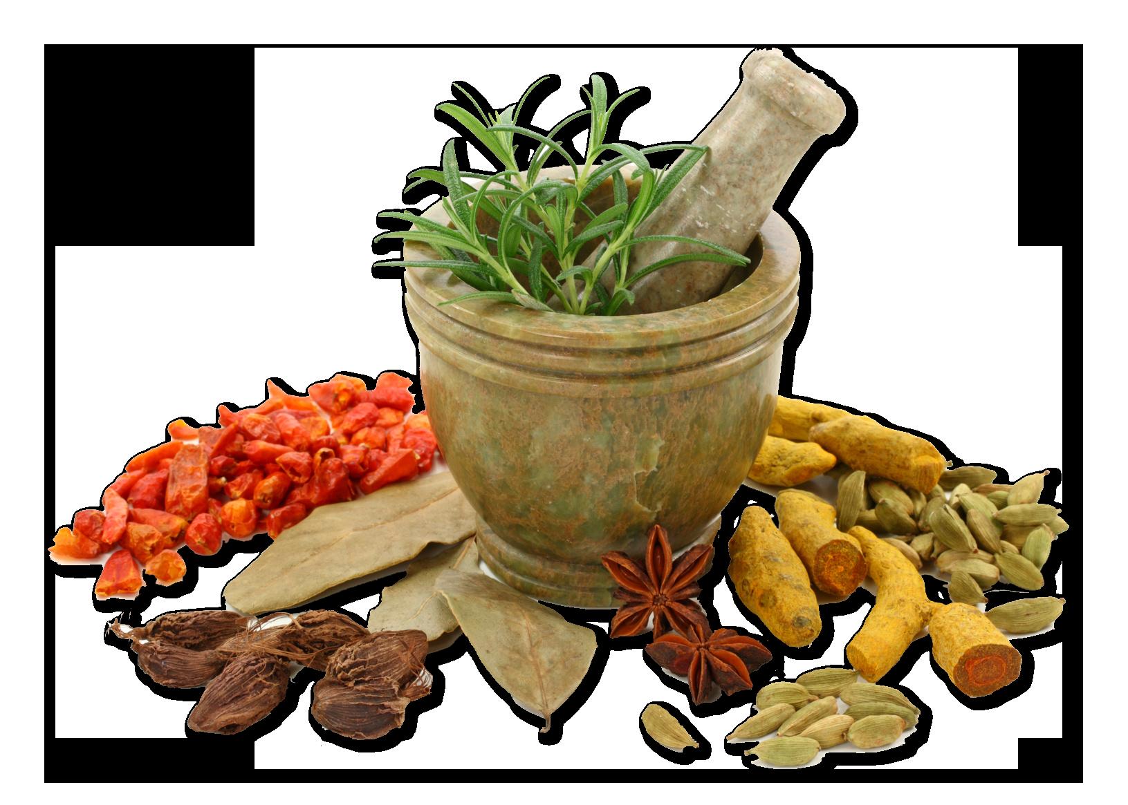 aromaterapia-1 | Jardin del Zen